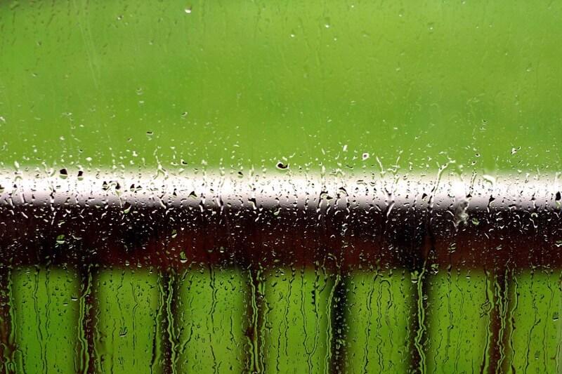 pulihora - inside rain