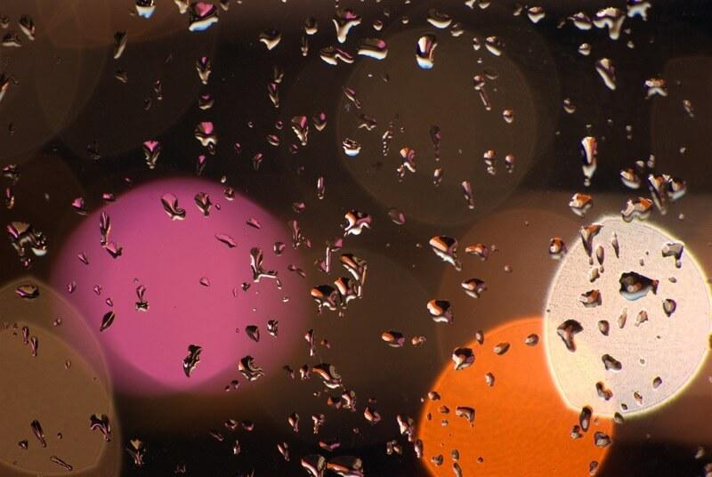 Dimbledar - Rainy Bokeh