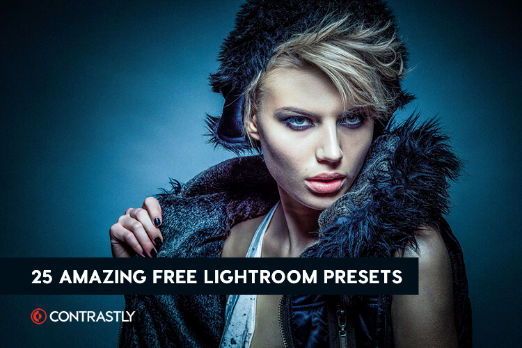 230+ Free Lightroom Presets You Will Love - The Photo Argus