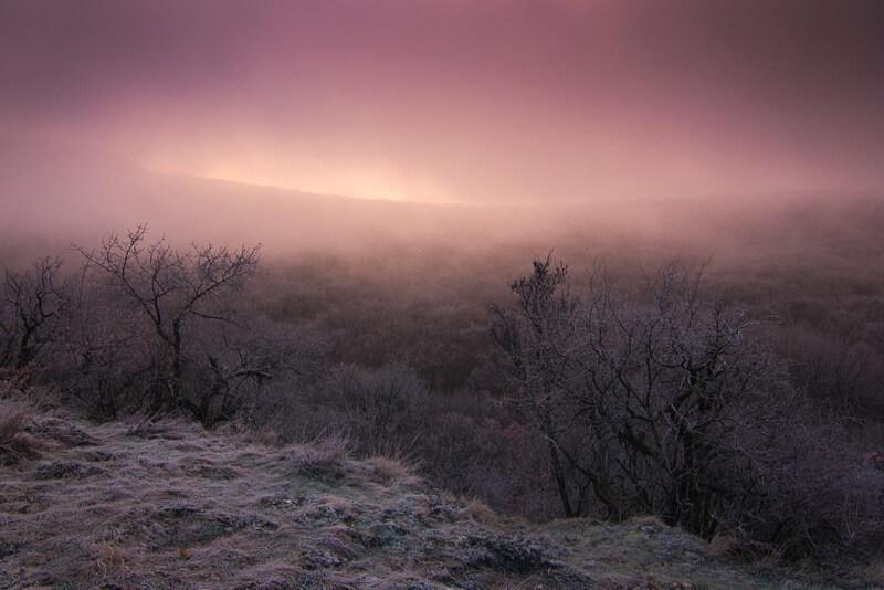 Roman Vanur - Misty morning