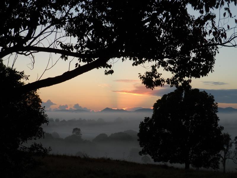 25 Misty Morning Photos