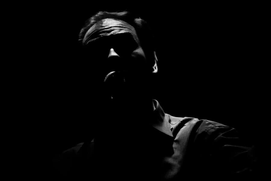 Hernán Piñera - Voice