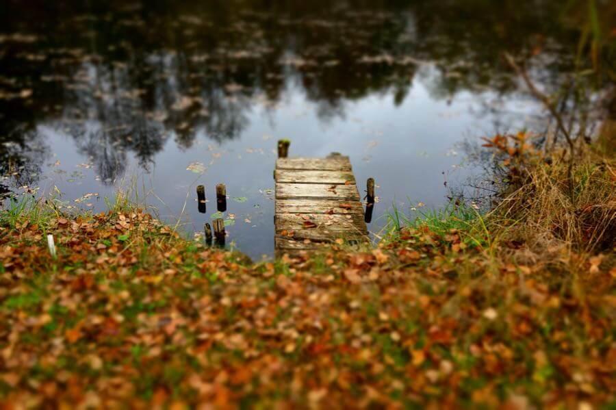 Matthias Ripp - Autumn colours