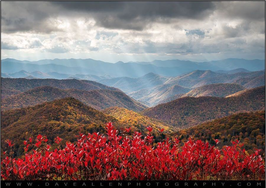 Dave Allen Photography - Blue Ridge Parkway Fall Foliage NC - The Light