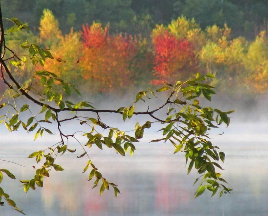 katieb50 - Autumn Colors