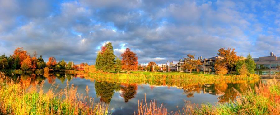 temporalata - Autumn lake