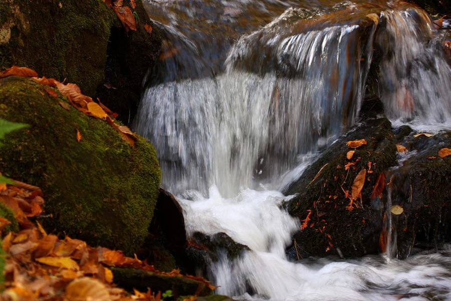 Martin Cathrae - Autumn Waterfall