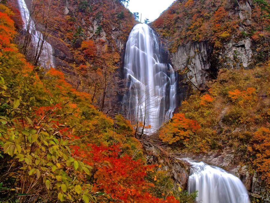 Syuzo Tsushima - autumn falls