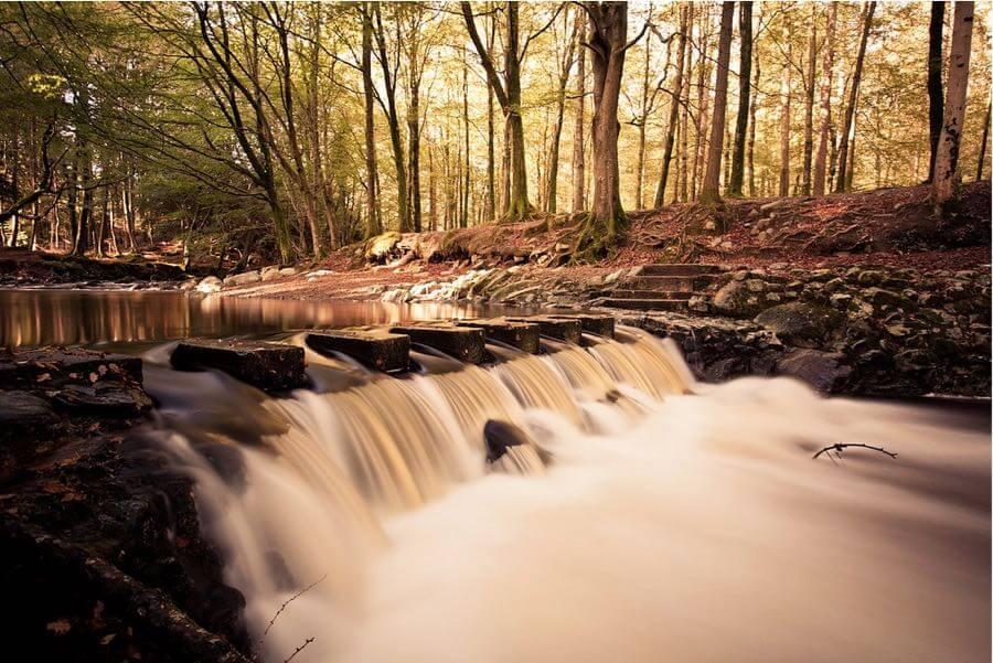 (Flixelpix) David - Stepping Stones in Autumn