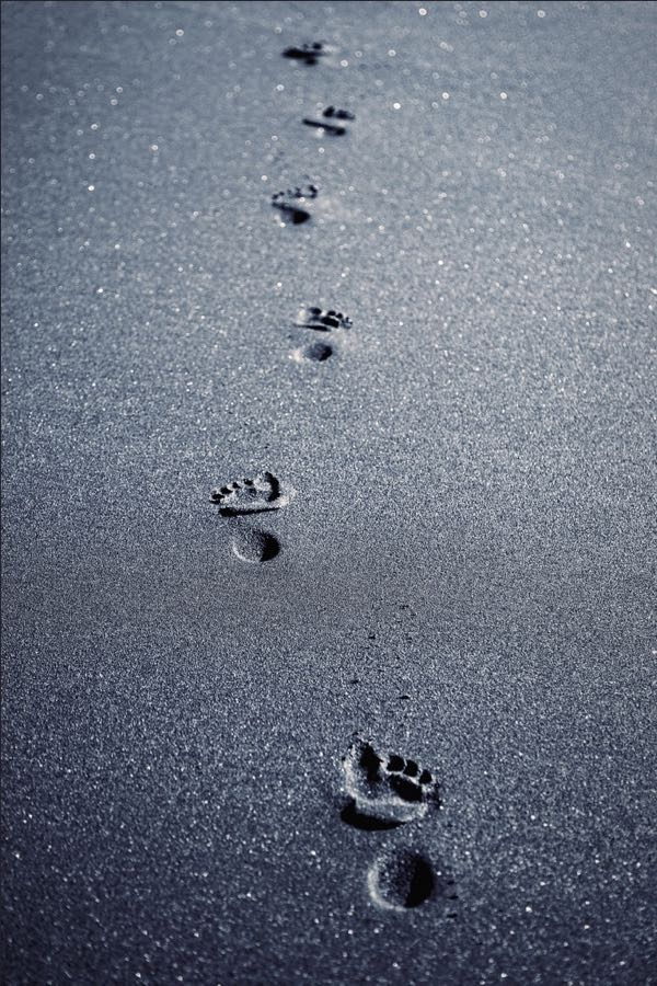 Elizme - ~ Footprints ~