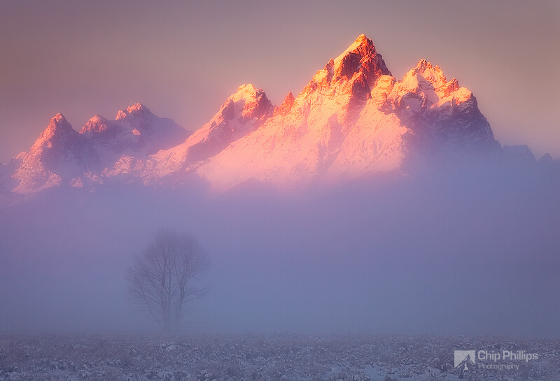 Chip Phillips - Grand Teton Mist