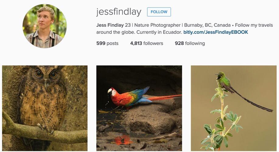 jess findlay