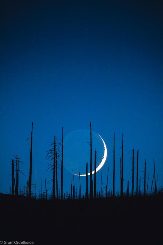 Crescent Moon simplicity
