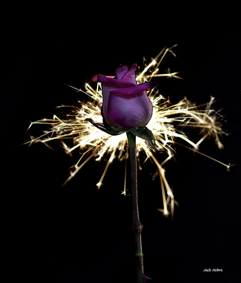rose with sparks