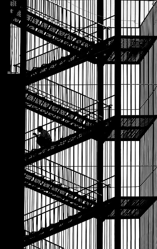 black and white stairwell