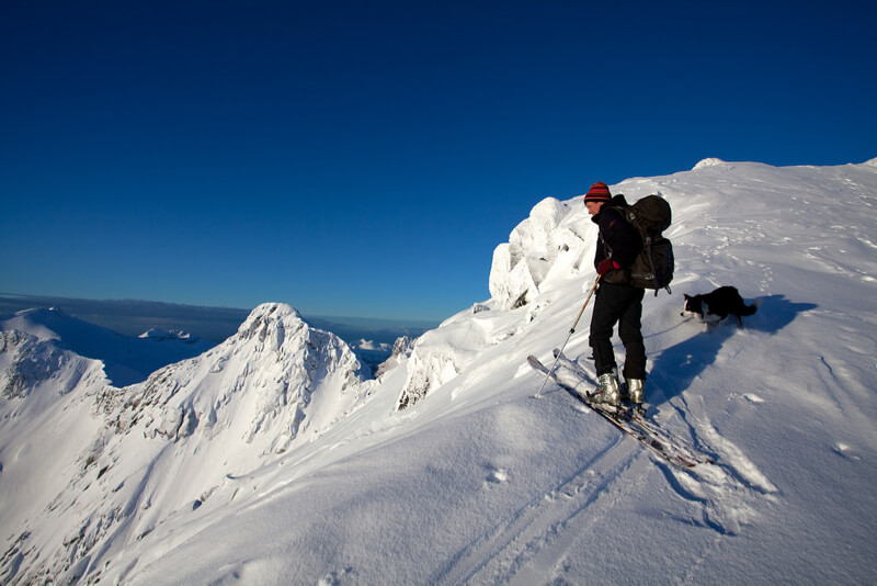 skier with dog on top of a mountain