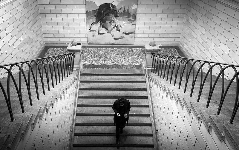 Man walking down a staircase with a painting of cows