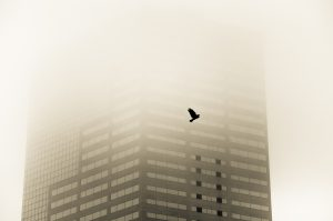 How to Dramatically Improve Your Photo's Composition
