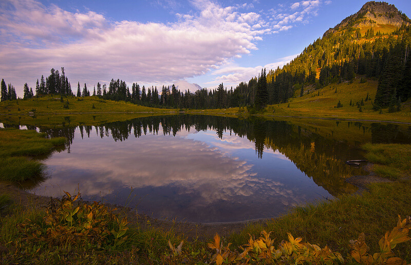 Tipsoo Lake in the Morning, Mt Rainier NP