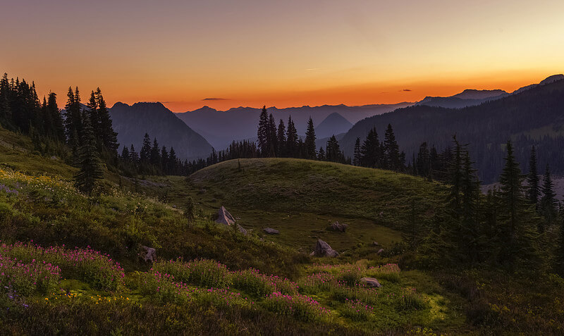 Mt Rainier Park at Sunset