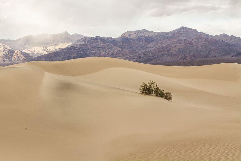 Dzung Tran Death Valley - Mesquite Sand Dunes