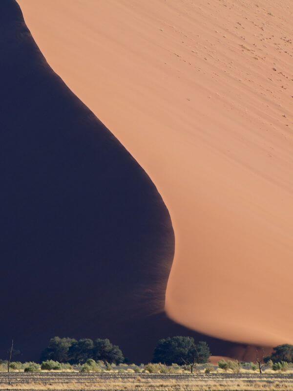 Gustavo Jeronimo namib desert dune