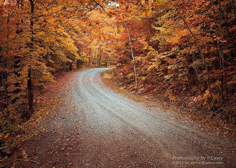 empty road autumn