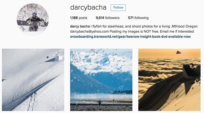 Darcy Bacha