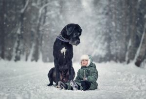 25 Cute Pictures of Big Dogs and Little Kids by Andy Seliverstoff