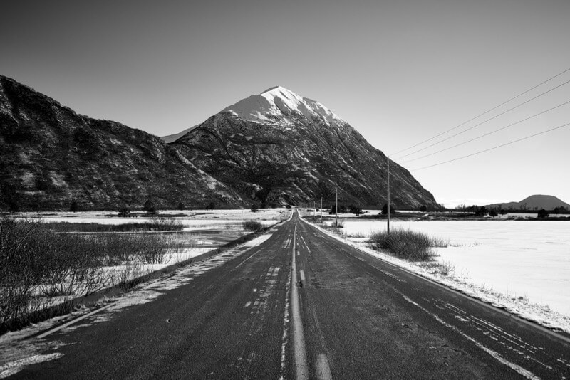 Andrew Petersen - On the Road