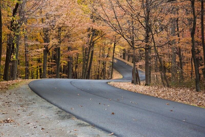 Wayne Silver - Winding road