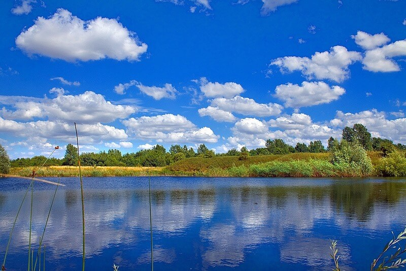 Robert Felton - Summer Clouds