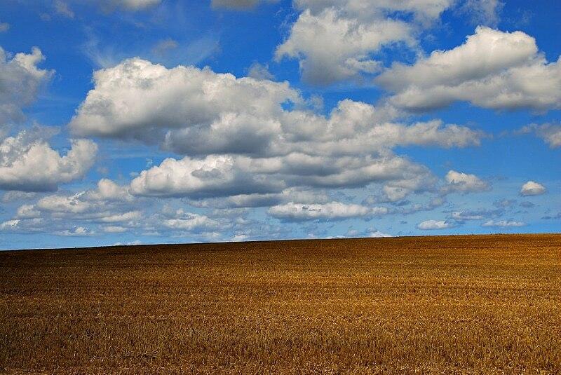 Richard Watkins - Field, Sky and Clouds