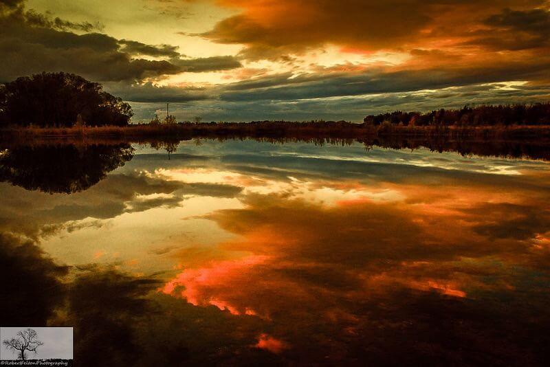 Robert Felton - Dog Farm Lake Cloudscape