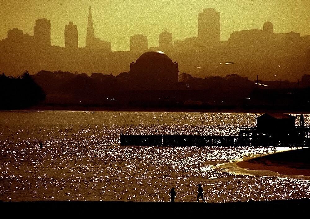 David Ohmer - San Francisco Skyline & Palace of Fine Arts