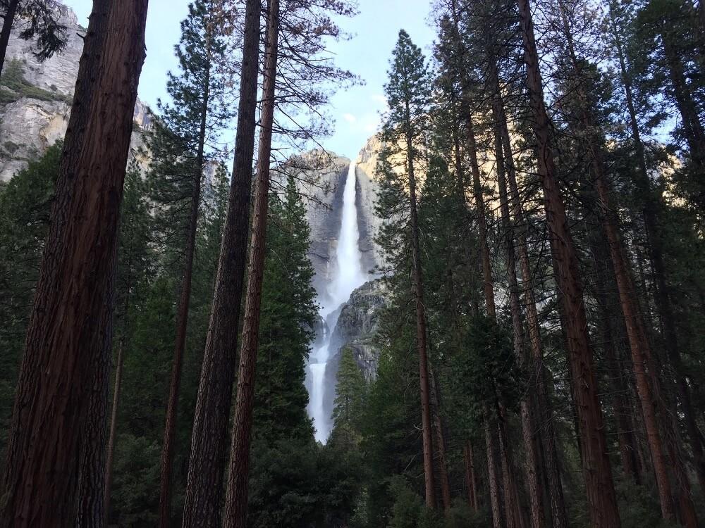calamity_sal - Yosemite Falls