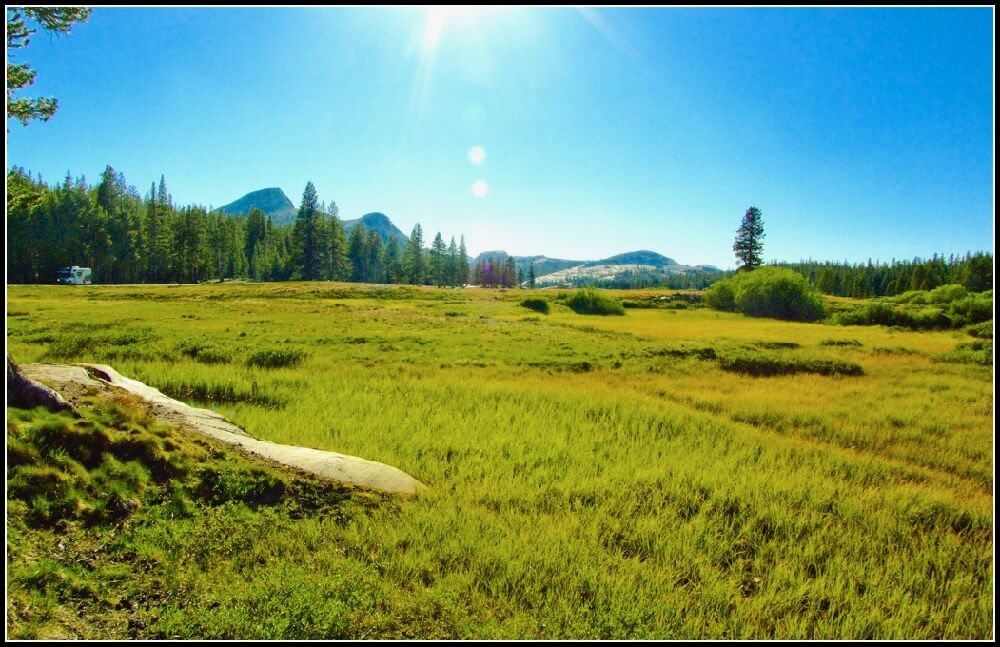 Don Graham - Tuolumne Meadows, Yosemite High Country