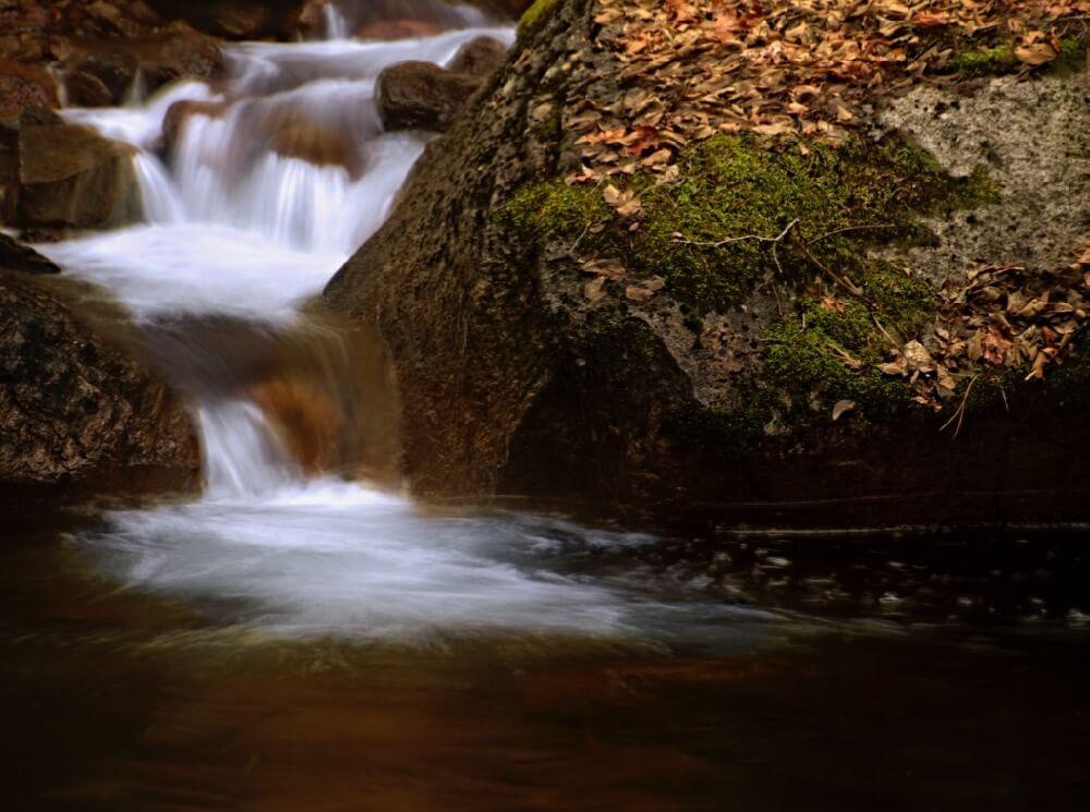 Steve Corey - Tenaya Creek