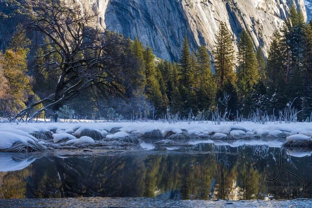 LotsaSmiles Photography - Yosemite