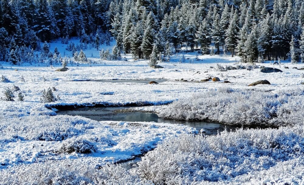 Don Graham - Frosty Morning, Tuolumne Meadows, Yosemite