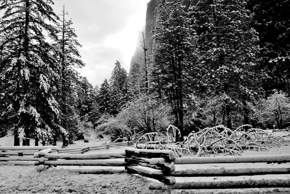 chris.murphy - Yosemite in Winter