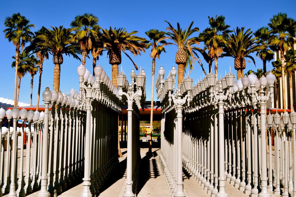 Sarah Ackerman - Los Angeles County Museum