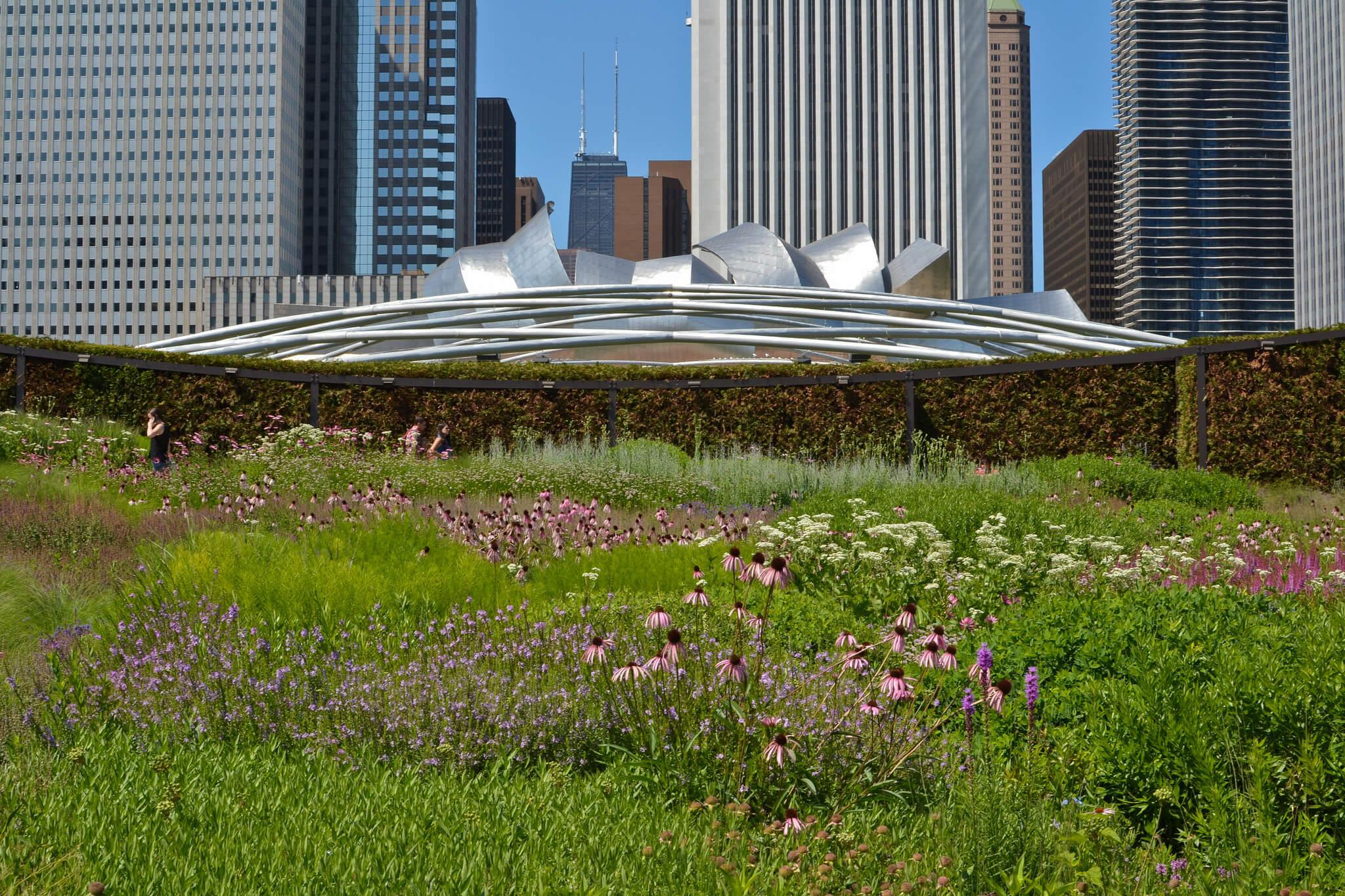 Center for Neighborhood Technology - Lurie Garden at Millennium Park – Chicago