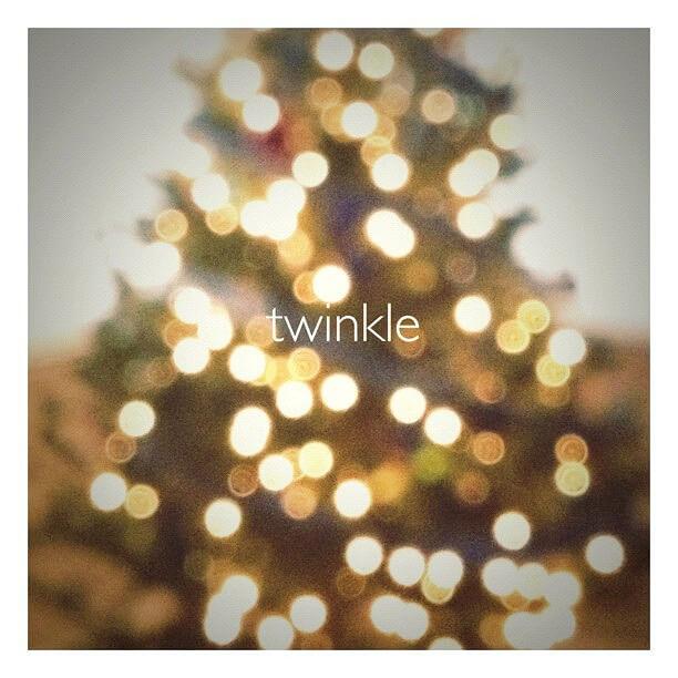 jordan parks - christmas tree bokeh twinkle