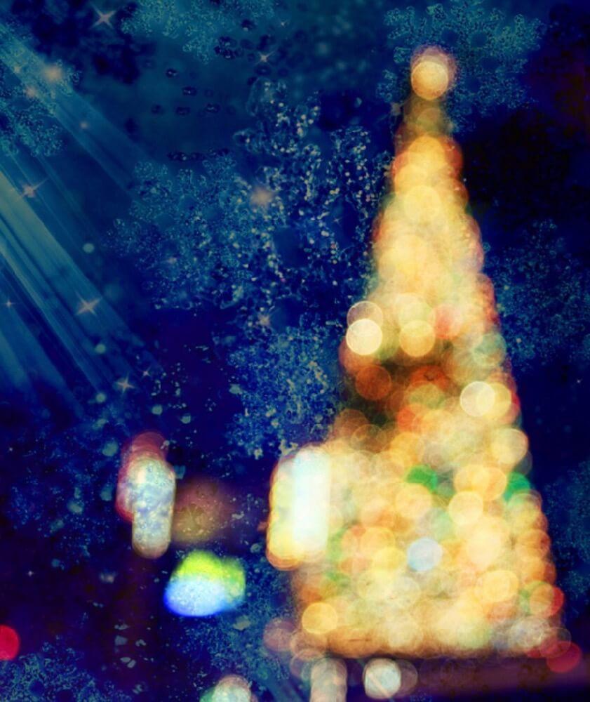 Ric - Merry Christmas!
