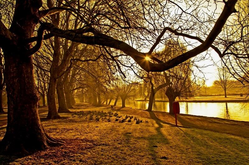 Robert Felton - Sunburst Embankment