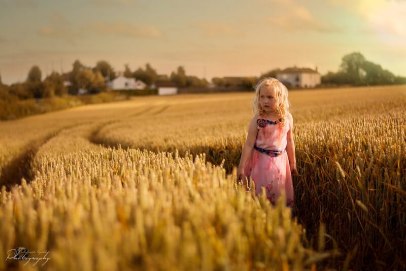 wheat fields portrait