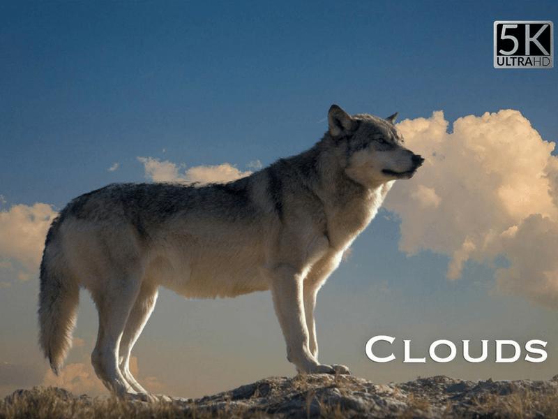cloud photo overlay