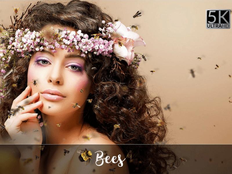bees photo overlay