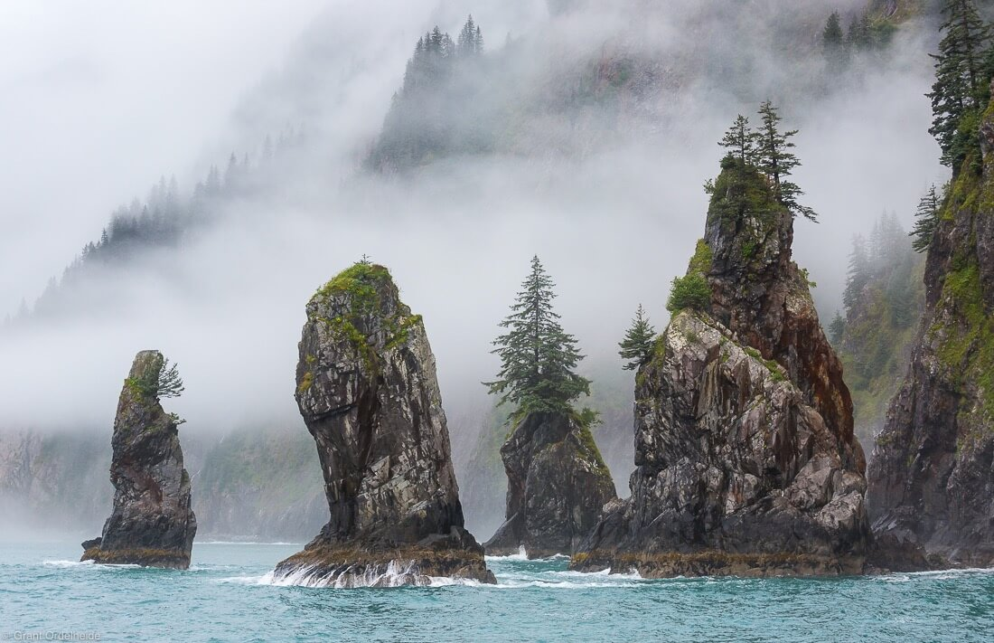 Cove of the Spires in Kenai Fjords national park
